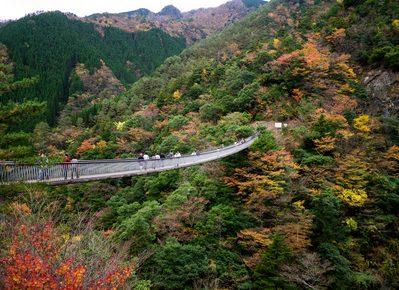 梅ノ木轟吊り橋