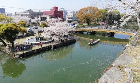 八代城跡の桜