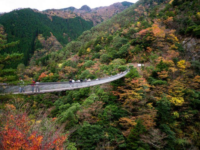 梅の木轟公園の吊橋