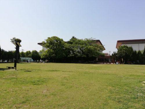 八代総合体育館横の公園