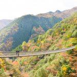 梅の木轟公園吊橋