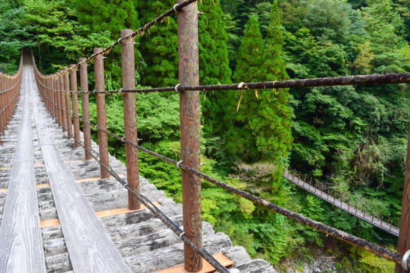 樅木の吊橋